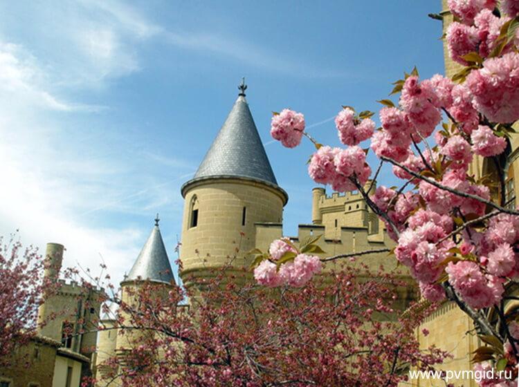 Замок в Олите - фото