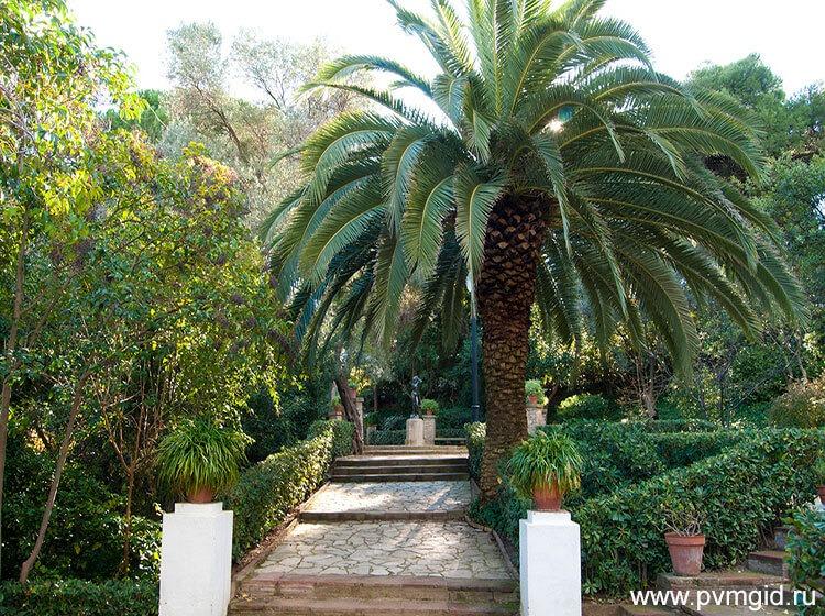 Тропинки в саду в ботаническом саду - фото