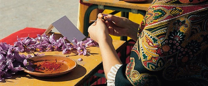 Фестиваль шафрана в Консуэгра