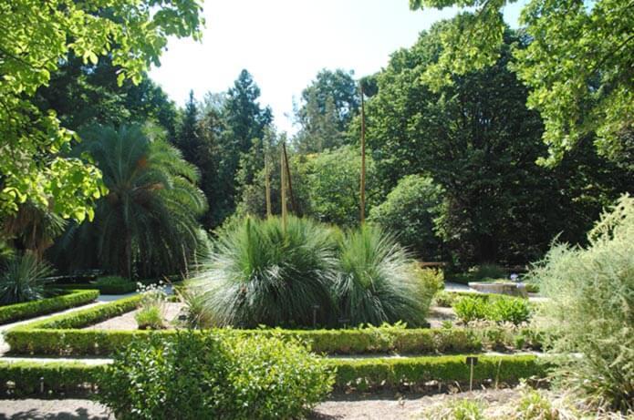 Королевский ботанический сад в Мадриде