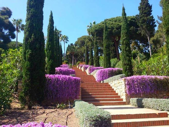 Ботанический сад Маримуртра - фото