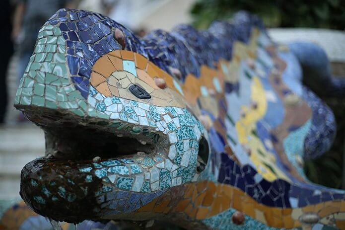 Ящерица - саламандра в парке - фото