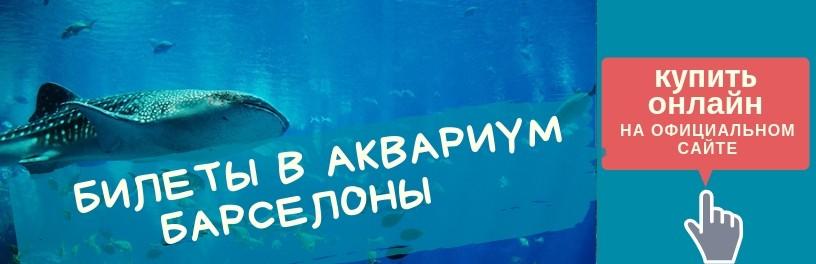 Купить билет в аквариум Барселоны онлайн