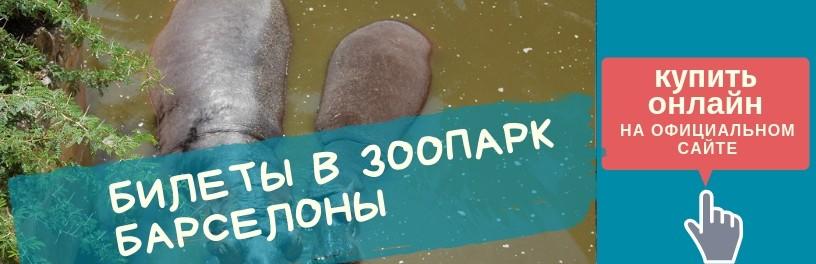 Купить билет в зоопарк Барселоны