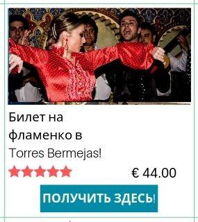 Билет на фламенко Torres Bermejas
