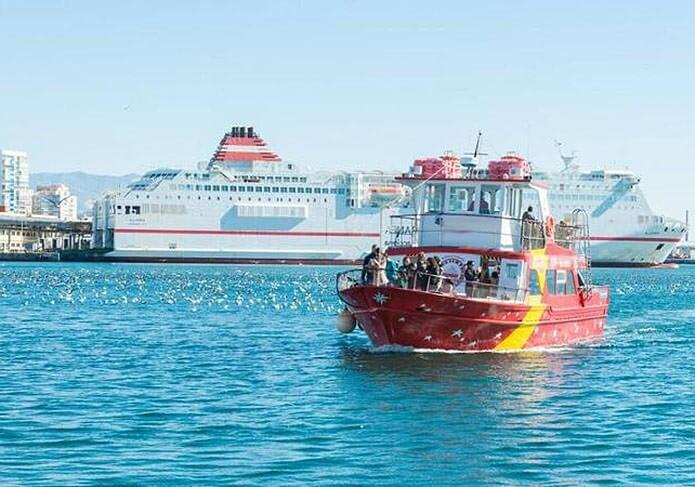 Туристическая лодка в Малаге - фото