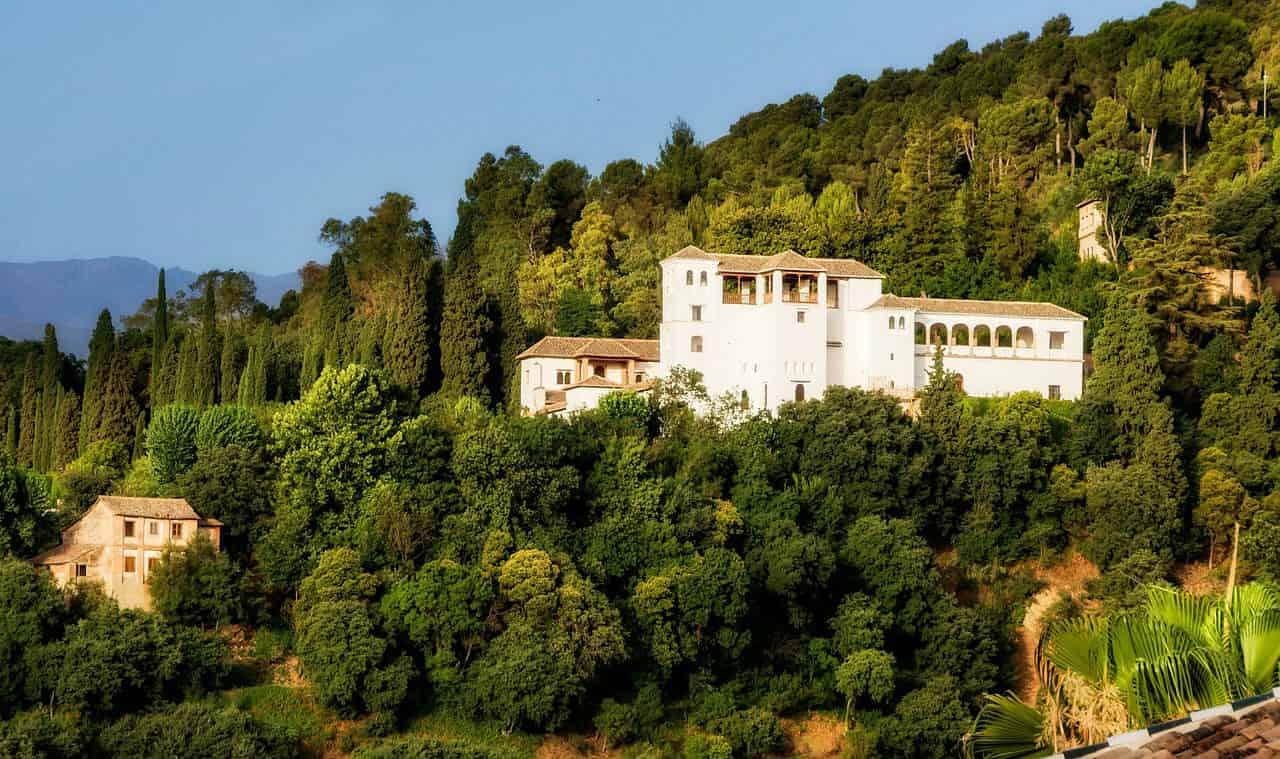Альгамбрский лес - фото